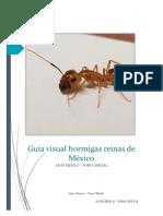 Clases de hormigas