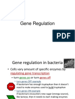 Gene Regulation.ppt