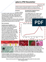 Raspberry IPM Newsletter - August 16, 2019