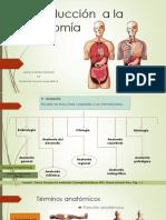 Introducción  a la Anatomía.pptx