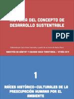 Evolución Del Desarrollo Sustentable