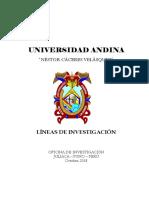 Lineas de investigacion UNIVERSIDAD ANDINA NESTOR CACERES VELASQUEZ