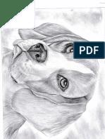 Perro a lapiz en pdf
