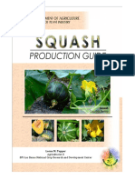 Productionguide Squash