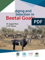 Beetal Goats Judging and Selection