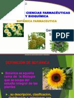 SEMANA 1 BOTANICA FARMACEUTICA 2019 II.pptx