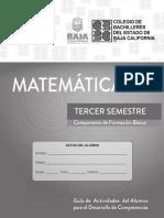 MATEMÁTICAS III 2019-2 (1).pdf