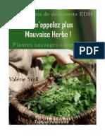 Livret Plantes Sauvages Comestibles