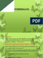 1_numeralul