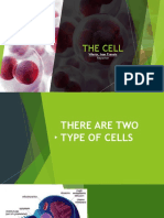 THE-CELL.pptx