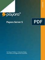 Payara Server Data Sheet
