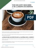 5 Energizantes Naturales Increíbles (¡Sin Cafeína!)