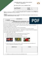 Formato Plan de Nivelación Institucional