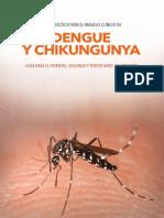 Manejo dengue