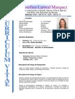 Formato curriculum Ely josefina larreal marquez (1).docx
