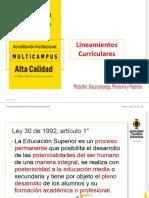 LINEAMIENTOS CURRICULARES EN LA EDUCACIÓN SUPERIOR (1).pptx