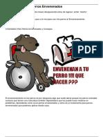 3 Remedios Para Perros Envenenados Perritos Amino