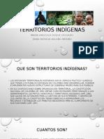 territorios indígenas colombia