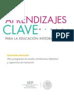 V a Educ Preecolar Programa