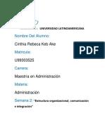 2do Avance Pf Estructura Organizacional, Comunicacion e Integracion