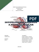 Seminario Intercambio Gaseoso a Nivel Alveolar