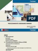 Julio Vizcardo_ Procedimiento Ordinario Minero.ppt