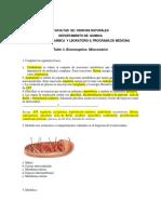 Taller_Bioenergetica.docx