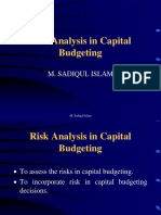 Slide6 CapBud Risk Analysis