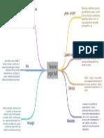 Actividad 1 - Mapa Mental Ejemplos de Proyectos Según Brief