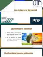 GRUPO 1 Estudios de Impacto Ambiental