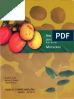 Manual de Sementes Da Amazônia - Guariúba