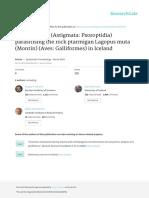 Feather Mites Astigmata Psoroptidia Parasitising t