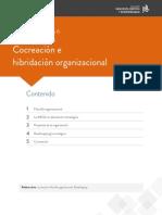 LECTUTA ESCENARIO 6.pdf