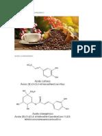 Acido Clorogenico en El Cafe Verde