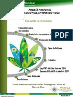 Segundo Boletin Cannabis en Colombia.3 0