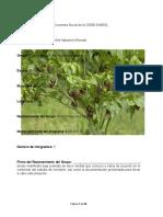 242409958 Proyecto Chile Habanero Morado Playa Azul PDF