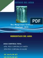 Clase 35 - Homeostasis Del Agua
