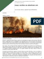 Incêndios Em Áreas Verdes Se Alastram Em Uberlândia - Diário de Uberlândia