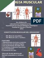 clasemusc2003-medicina.ppt
