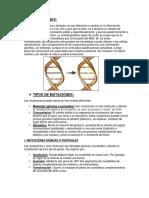 Mutaciones (Tipos Importancia Herencia Anomalías)