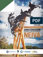 Caracterización-Tejido-Empresarial-Neiva.pdf