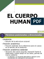 CH2 El Cuerpo Humano