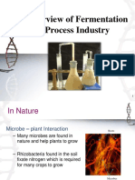 Overview of Fermentation Process - Bioprocess Principles