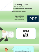 Integrador Norma Apa