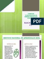 ACTIVIDAD 2  BLACKBOARD.pptx