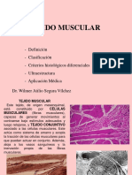 7. Tejido Muscular