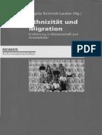 Ethnizitat_-_Perspektiven_und_Konzepte_d.pdf