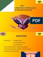 BPH PSPD 2012.pptx