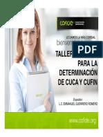 Taller Integral Para La Determinación de Cuca y Cufin