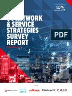 Strategies Survey Report